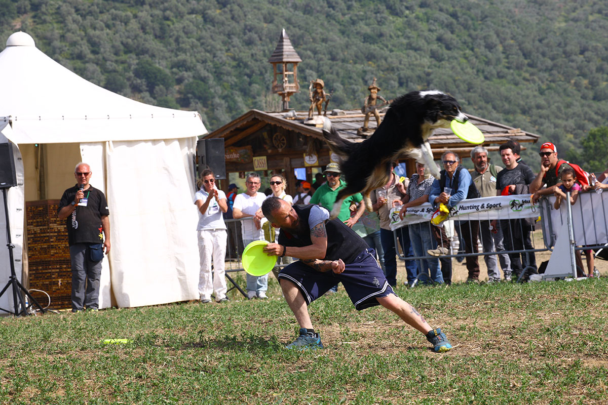agility-disc-dog-game-fair-6